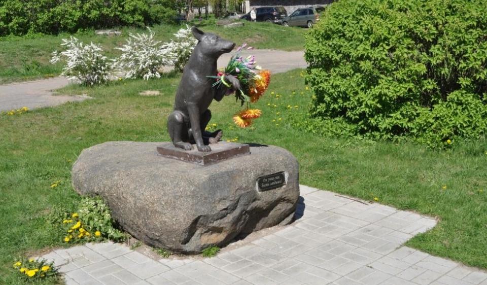 Памятник бездомной собаке в Новой Ладоге. Фото: kkv1970 (wikimapia.org)