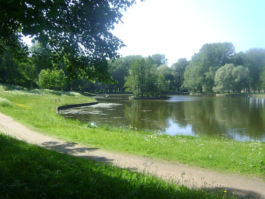 Парк Новознаменка в районе. Фото: Martsabus (Wikimedia Commons)