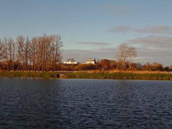 Луговой парк в Петергофе. Фото: citywalls.ru