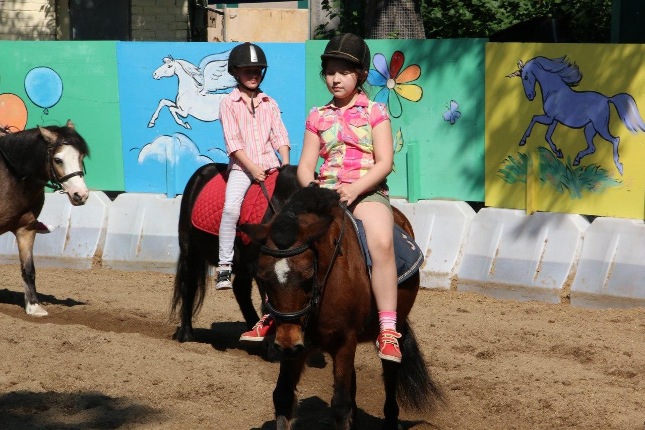 Пони клуб Ленинградского Зоопарка