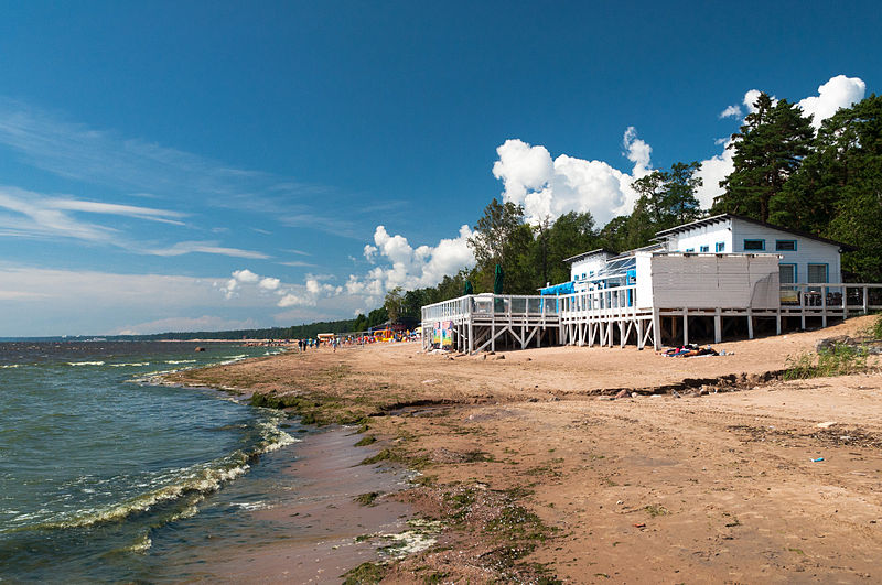 Побережье Финского залива, пос. Комарово, Wikimedia Commons, Автор: Volunka