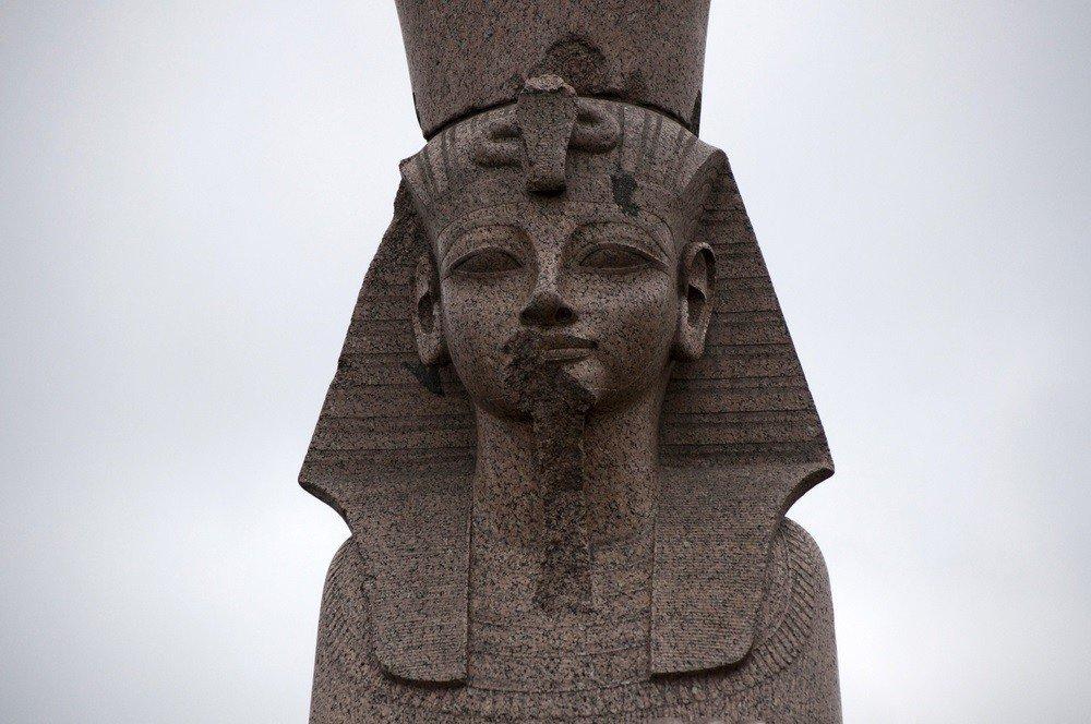 Египетские сфинксы, фото с сайта Twitter.com