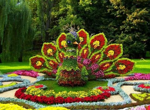«Императорские сады России», источник фото: cityspb.ru