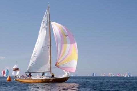 Балтийский Морской Фестиваль, источник фото: rusyf.ru