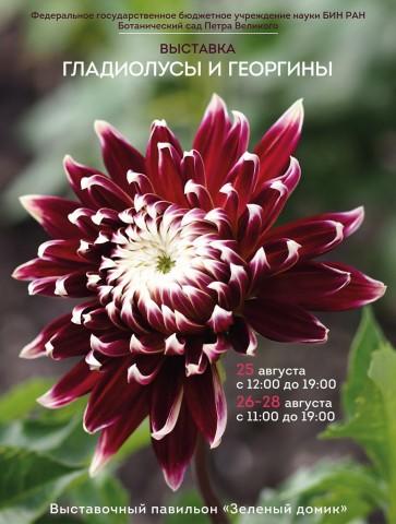 Выставка гладиолусов и георгинов в Ботаническом саду Петра Великого, источник фото:  https://vk.com/botsad_spb