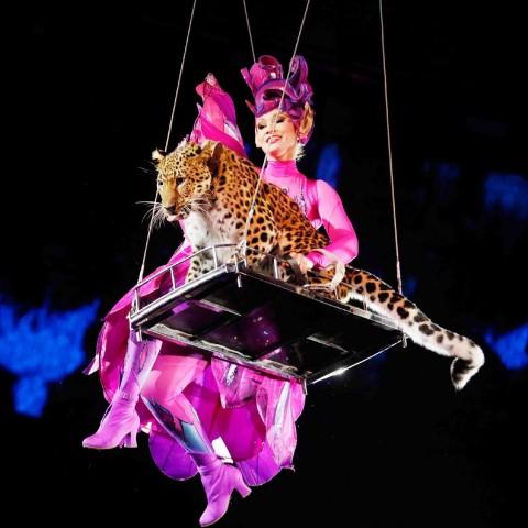 "Новая программа в Цирке на Фонтанке - ""Посланник, источник фото: http://www.circus.spb.ru/ru/programma/programma-cirka-na-fontanke/?utm_source=kudago&utm_medium=cpm&utm_campaign=display"