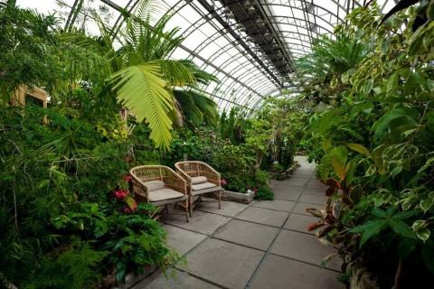 Бесплатные лекции в оранжерее Таврического сада, источник фото: https://vk.com/spbfree?w=wall-37726129_50762