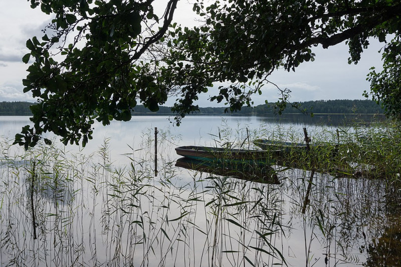 Горовалдайское озеро в Ленинградской области. Фото: Alexey Komarov