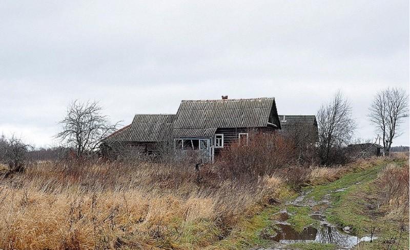 Фото деревни Луги с сайта urban3p.ru.