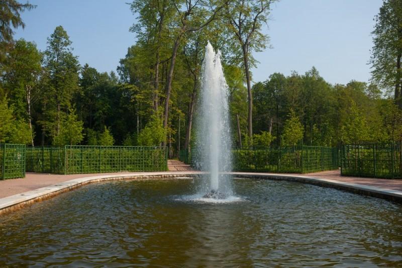 Центр Лабиринта в Петергофе. Фото с официального сайта музея-заповедника