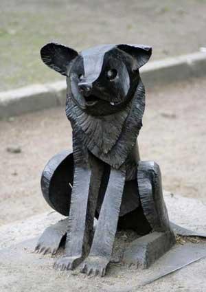 Памятник бродячей собаке Гаврюше. http://wikimapia.org/