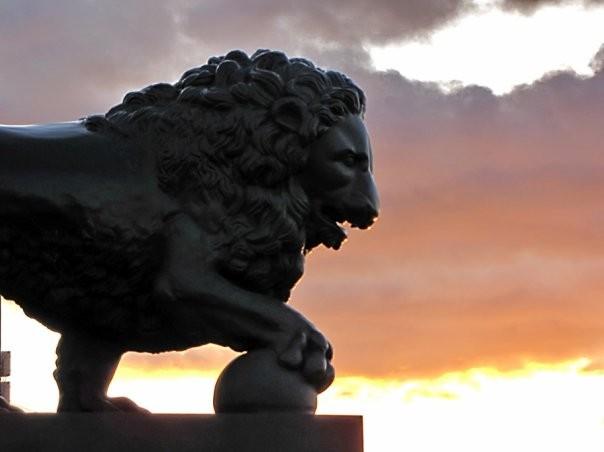 Лев на набережной Невы. Автор фото: Ольга Тихомирова
