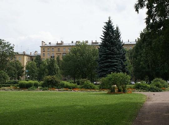 "Сад ""Нева"". Автор фото: Vityavo (Wikimedia Commons)"