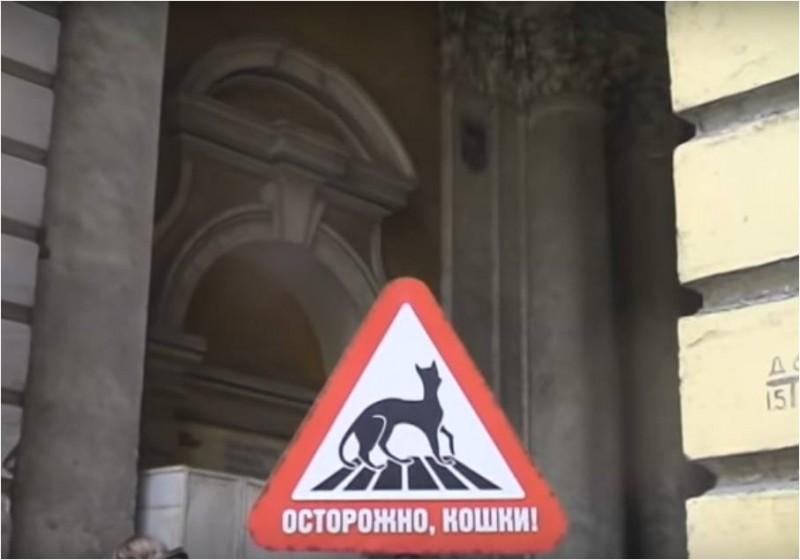 """Знак """"Осторожно, кошки!"""" Источник: https://www.youtube.com/"""