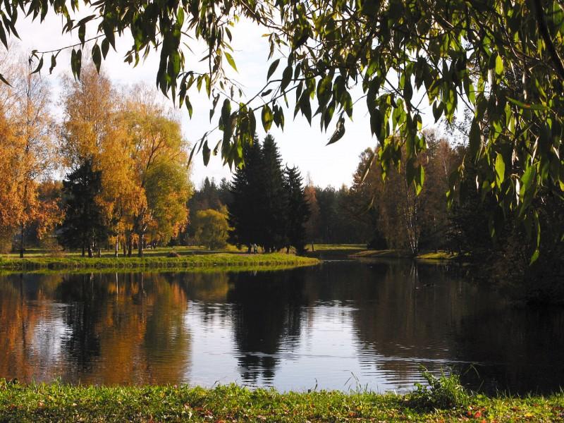 Павловский парк. Автор фото: Andrew Krizhanovsky (Wikimedia Commons)