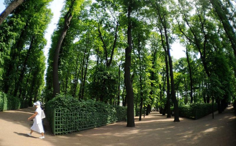 Летний сад. Фото: Tatiana Bashinskaya (Wikimedia Commons)