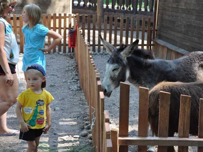 "Зоопарк ""Радуга"", источник фото: http://radugazoo.ru"