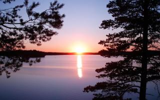 Озеро Зеркальное, Ленинградская область. Фото: Макс Колчин (Wikimedia Commons)