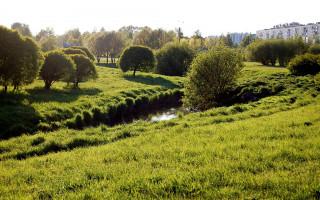 Муринский парк в Санкт-Петербурге (западная часть). Фото: Ingvar-fed (Wikimedia Commons)