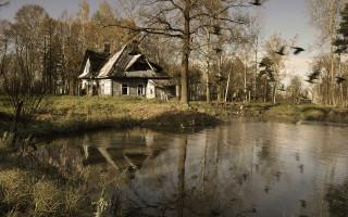 Фото домика лесника. Автор: Петр Косых