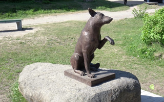 Памятник собаке - Новая Ладога. Фото: PavelLobanov (wikimapia.org)
