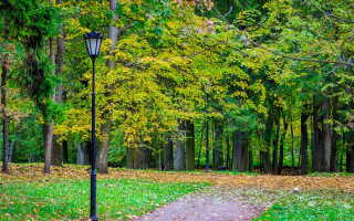 Осень в Гатчине