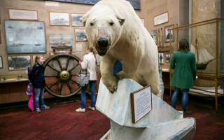 Музей Арктики и Антарктики, источник фото: https://vk.com/artnight Фото: Вероника Якушкина