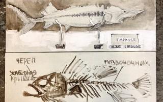 "Галерея ""Арт-Лига"". Рыба моей мечты. Графика, живопись, коллаж, источник фото: http://www.p-10.ru"