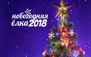 Новогодняя ёлка 2018