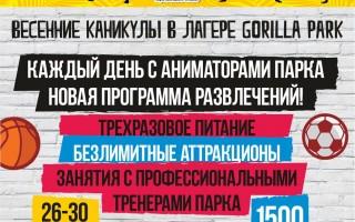 """Каникулы в """"GorillaPark"""". Весенний лагерь"""
