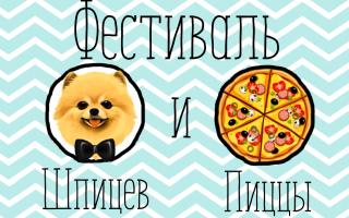 """Фестиваль """"Шпицы и Пицца"""" в Голицын Холле"""