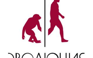 """Лекторий фонда """"Эволюция"""" в Санкт-Петербурге"""