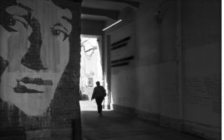 """Выставка """"Магия петербургских дворов и брандмауэров"""" в Тимирязевке"""