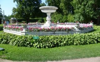 Фонтан Собственного садика. Автор: Peterburg.center