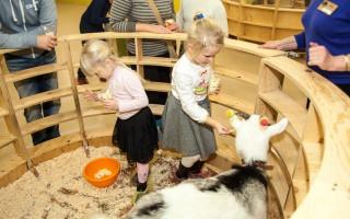 """Зоопарк """"Лесное Посольство"""", источник фото: lesnoeposolstvo.ru"""