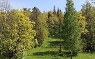 Ореховая гора. У пруда, источник фото: Wikimedia Commons, Автор: Line Gausvalter