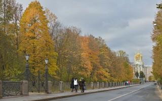 Пушкин. Садовая улица. Автор фото: Wolfgang Moroder (Wikimedia Commons)