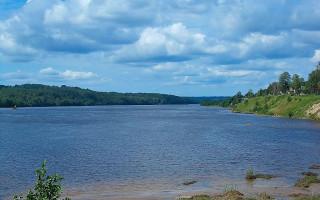 Река Свирь из п.Важины. Фото: Uz1awa (Wikimedia Commons)