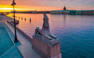 Сфинксы в Санкт-Петербурге