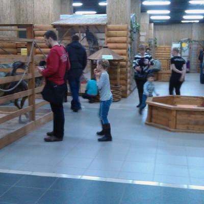 Трогательный зоопарк, автор http://open-zoo.ru