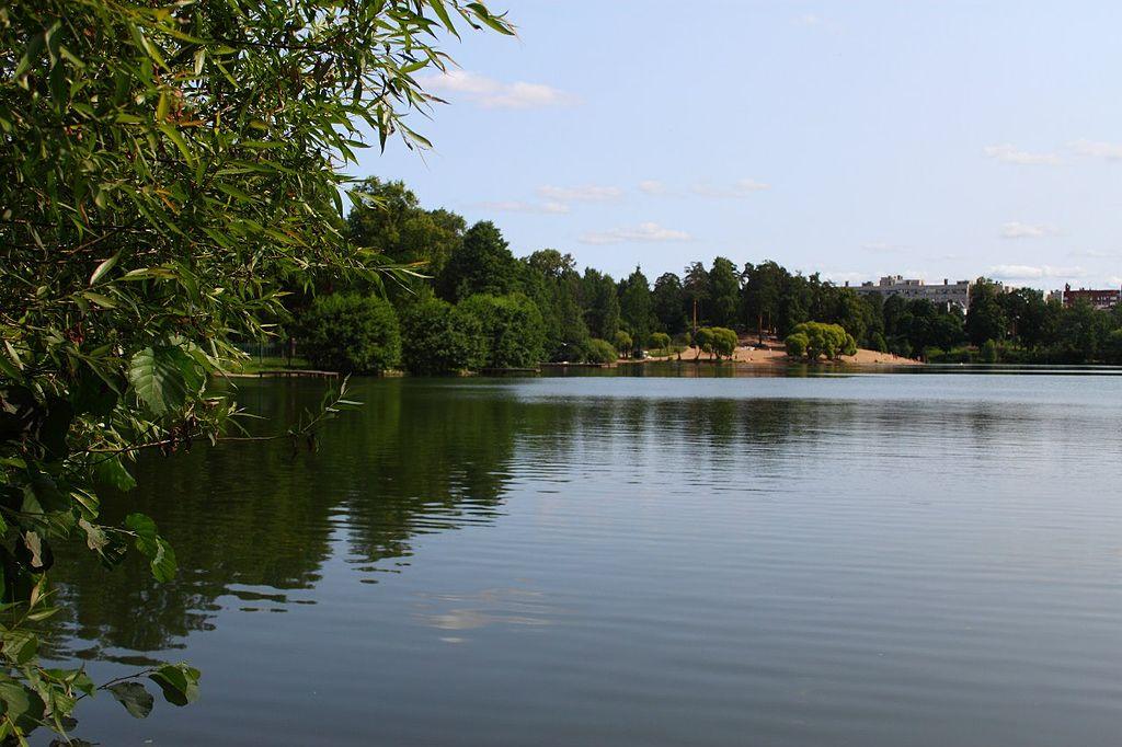 Верхнее Суздальское озеро, Wikimedia Commons, Автор: Messir
