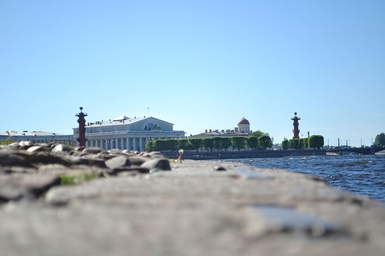 Васильевский остров на набережной Невы. Автор фото: Карачинцев Даня (Wikimedia Commons)