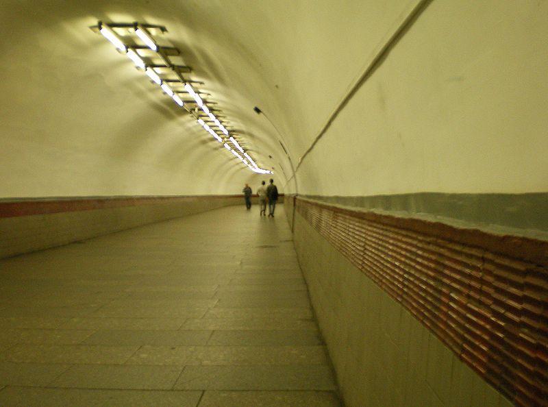 "Переход со станции ""Площадь Восстания"" на станцию ""Маяковская"". Автор фото: user:AndreyA (Wikimedia Commons)"