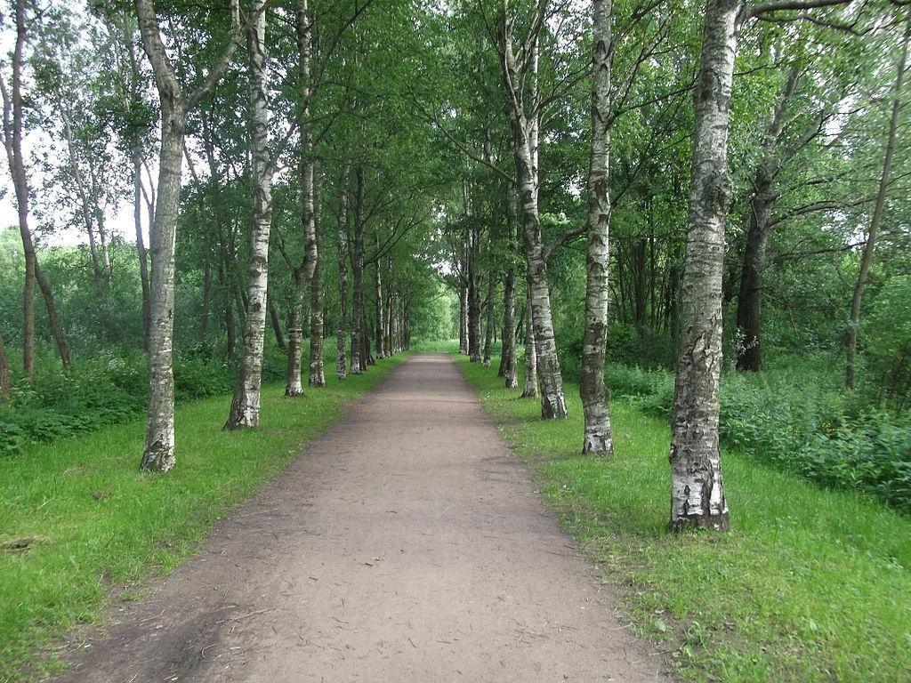 Полежаевский парк. Аллея Славы, 2012 г. Фото: Martsabus (Wikimedia Commons)