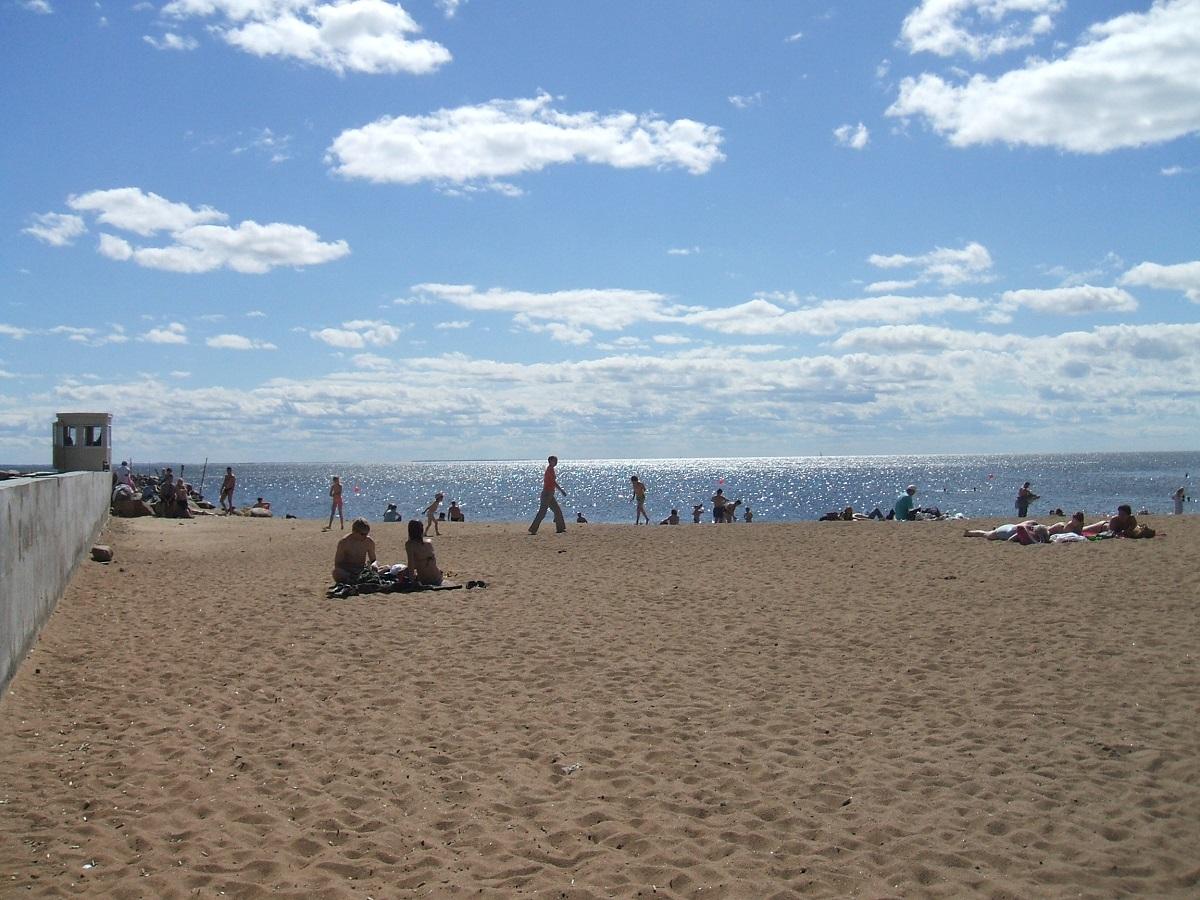 Золотой пляж. Автор фото :ПётрИванов